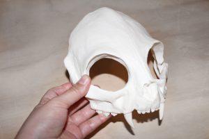 fabricación de máscaras
